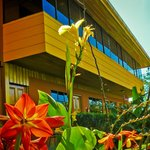 Hotel Cipreses Monteverde Costa Rica Foto
