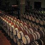 Wine barrels in a Cantina we visited