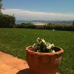 Una tinaja con flores mirando las vistas