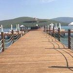 beach deck and bar