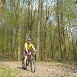 BikeBratislava mountain bike in action
