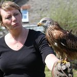 Debs with Isca the Red Kite