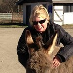 With BoBo the Donkey