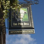 Pied Bull Sign