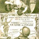 L'histoire passionnante du vin en Languedoc