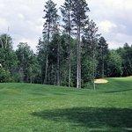 The Pines Golf Club Photo