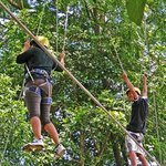 Salah satu Wahana Outbound di Green Forest Resort
