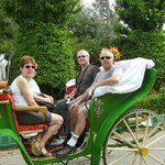 Taroudant Caleche Carriage Tours