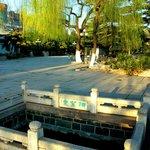 Jiunv Spring Photo