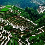 Terraces of Northern Guangdong