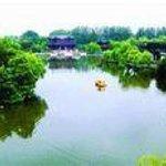 Gaoyou Lake Wetland Foto