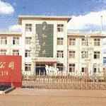 Linyi International Cinema
