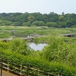 Museum Park Ibaraki Natural Museum