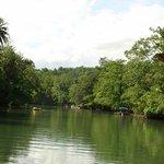 River cruise scenery