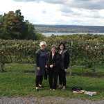 Fingerlakes wine trail