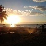Sunbird Nkopola's Sunset