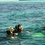 Diving off Farasan Island