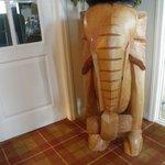 Elephant in hallway