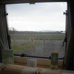 View from caravan window