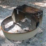 Fire pit / grill at each site