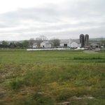 Verdant View Farm