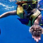 Great time with Aruba Bob Snorkeling!