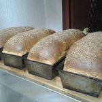 All Wheat Multigrain Bread