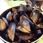 empty mussels