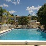 Venice Ave pool
