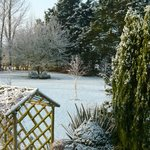 Ratling Cottage Gardens