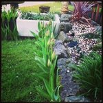 Garden- Beautiful