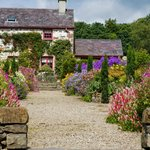 Pretty Garden Cottage and colourful summer borders