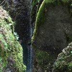 Gorge hike