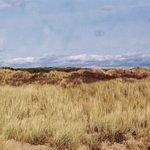 Cefn Sidan Sand Dunes