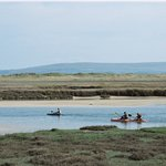 Canoes on the Estuary