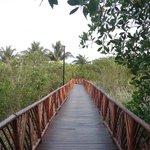 Puente entre la alberca de relajación y la playa