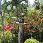 Budda in the garden.