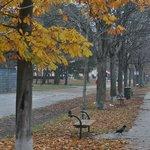 Parque Prater - bom passeio a poucos passos do hotel