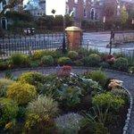 Little front garden