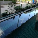 They call this a lap pool!