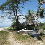 Kasa beach, Raw, rustic white sands and shade