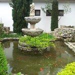 Petit bassin avec poissons