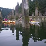 Family Paddle in Tod Inlet