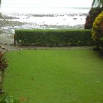 Beach house view at low tide. Osa jungle chicken mid hedge.