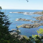 View from The Wild Pacific Trail