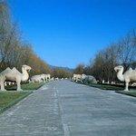 Qixiang Park of Guizhou