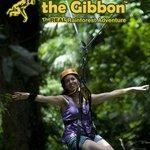 Woman ziplinging at Flight of the Gibbon