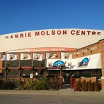 Entrance & Barrie Colts flags
