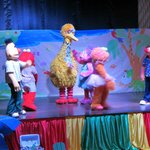 Sesame street night show