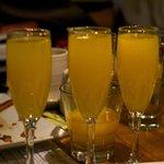 generous mimosa's